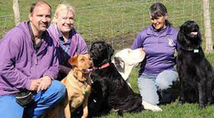 Sandra Lawton - the professional dog trainer